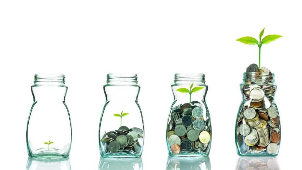 green shoot growing in jars of coins showing how the right environment can help a hotel build a successful revenue management plan